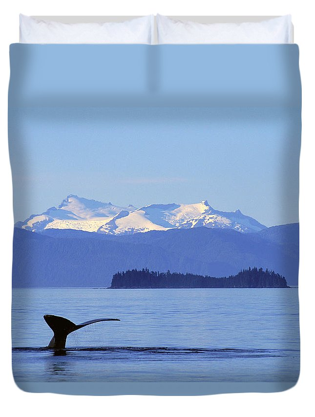 Alaska Duvet Cover featuring the photograph Humpback Whale Fluke by John Hyde - Printscapes