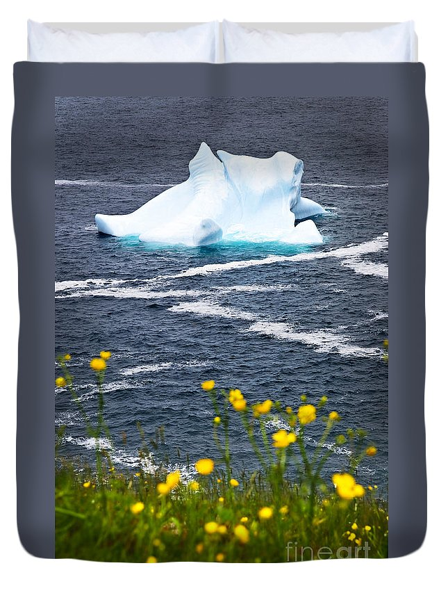 Iceberg Duvet Cover featuring the photograph Melting Iceberg by Elena Elisseeva