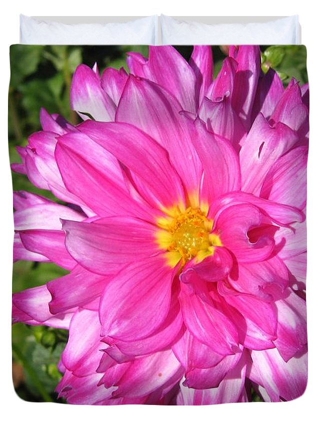 Dahlia Duvet Cover featuring the photograph Dahlia Named Who Dun It by J McCombie