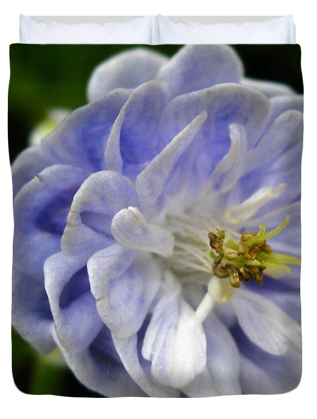 Double Columbine Duvet Cover featuring the photograph Double Columbine Named Light Blue by J McCombie