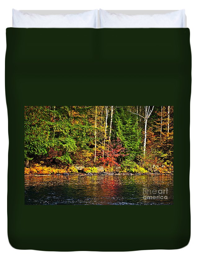 Autumn Duvet Cover featuring the photograph Fall Forest And River Landscape by Elena Elisseeva