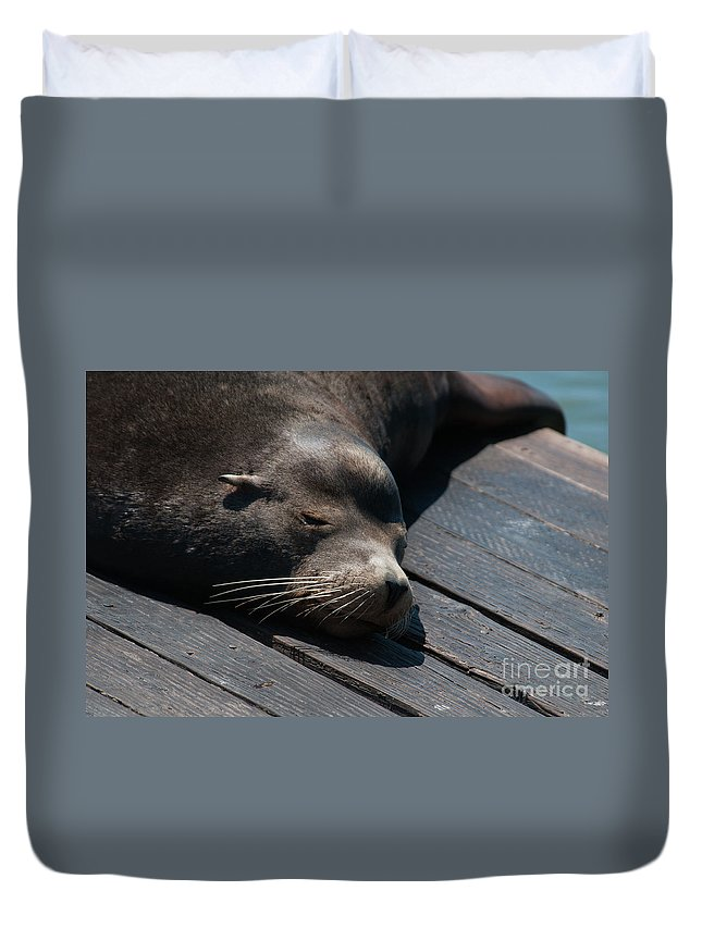 Animals Duvet Cover featuring the digital art Pier 39 San Francisco by Carol Ailles