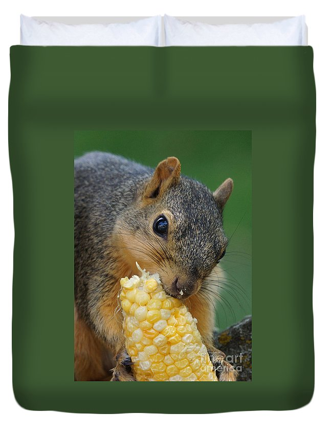 Squirrel Duvet Cover featuring the photograph Squirrel Eating Sweet Corn by Lori Tordsen