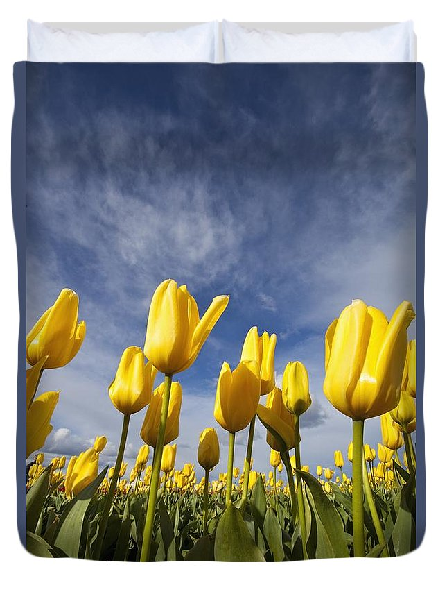 Sky Duvet Cover featuring the photograph Woodburn, Oregon, United States Of by Craig Tuttle