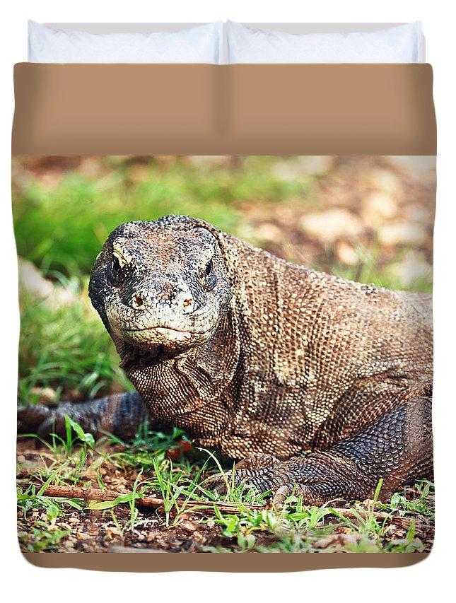 Komodo Duvet Cover featuring the photograph Komodo Dragon by MotHaiBaPhoto Prints