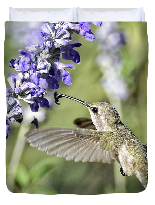 Annas Hummingbird Duvet Cover featuring the photograph Hummingbird by Saija Lehtonen
