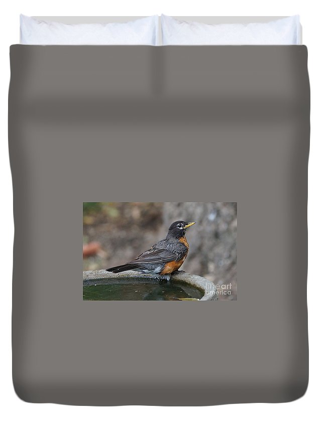 Robin Duvet Cover featuring the photograph Bath Time by Lori Tordsen