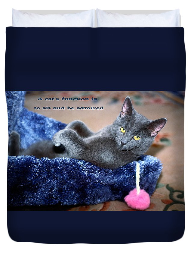 Russian Blue Kitten Lying Back Inside Scratching Post Duvet Cover featuring the photograph A Cats Function by Sally Weigand