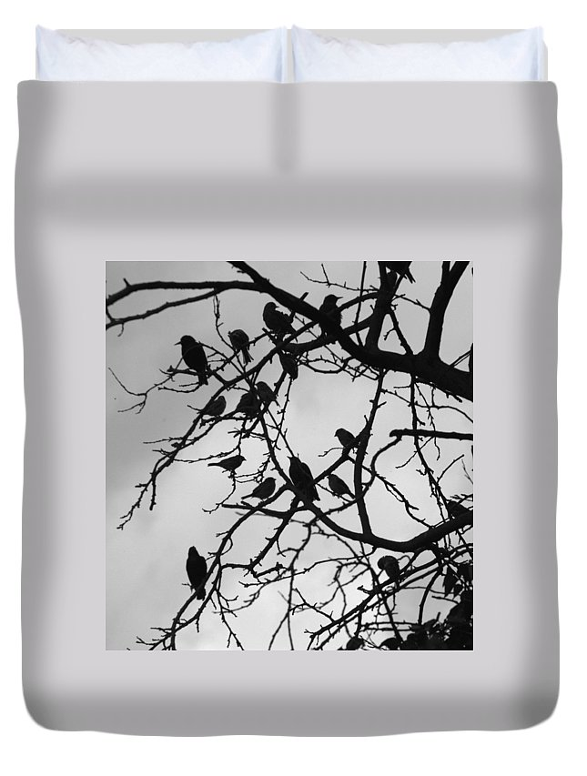 Starling Duvet Cover featuring the photograph A Hitchcock Moment by Chris Day