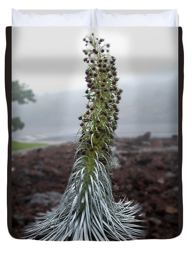Nature Duvet Cover featuring the photograph A Kiss Before Dying by Paulette B Wright