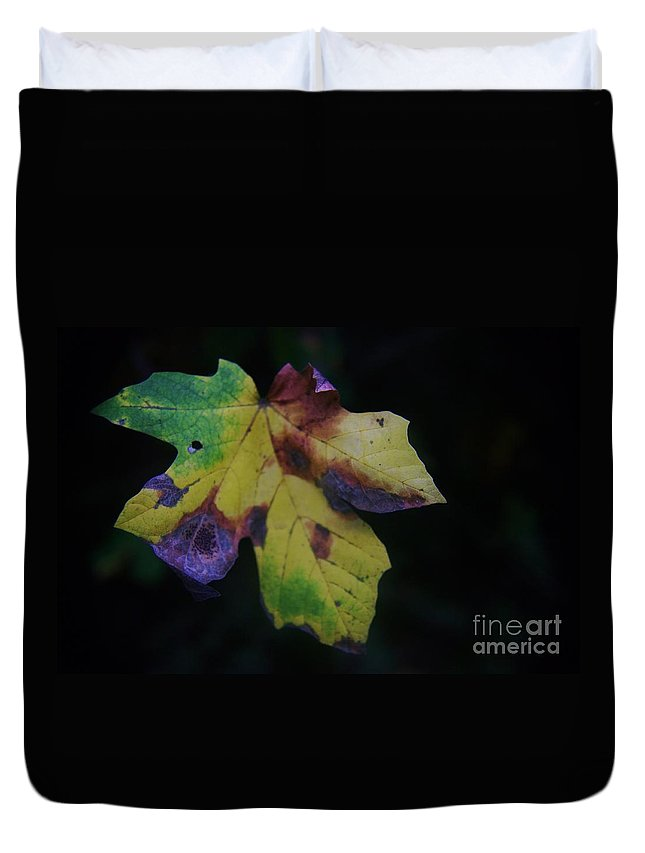 Leaves Duvet Cover featuring the photograph A Leaf Left Black And Blue by Jeff Swan