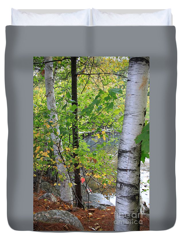 Fall In New Hampshire Duvet Cover featuring the photograph A Little Bit Of Color by Michael Mooney