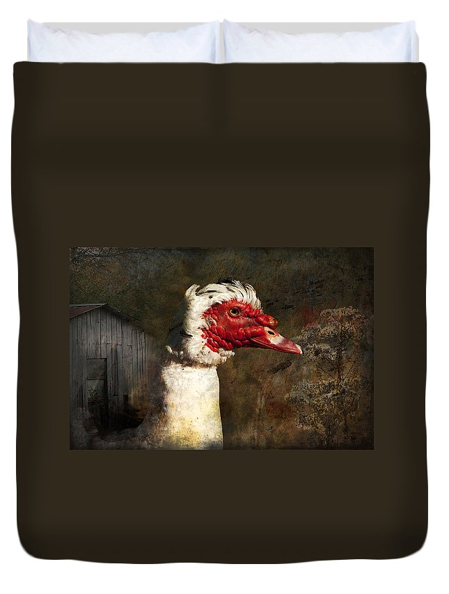 Muscovie Duvet Cover featuring the photograph A Little Bit Of Country Grunge by Kathy Clark