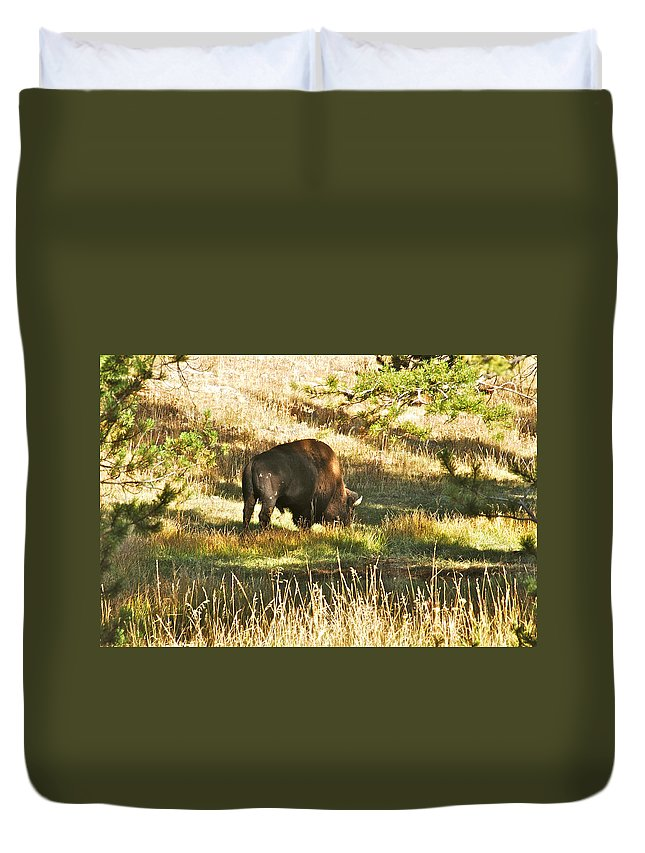 Bison Duvet Cover featuring the photograph A Lone Bison In Yellowstone 9467 by Michael Peychich