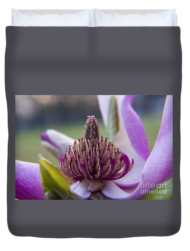 Center Duvet Cover featuring the photograph A Look Inside by Darleen Stry