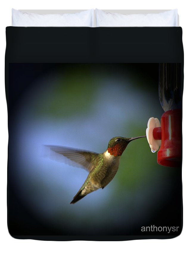 Hummingbird Duvet Cover featuring the photograph A Male Ruby-throated Hummingbird by Anthony Walker Sr