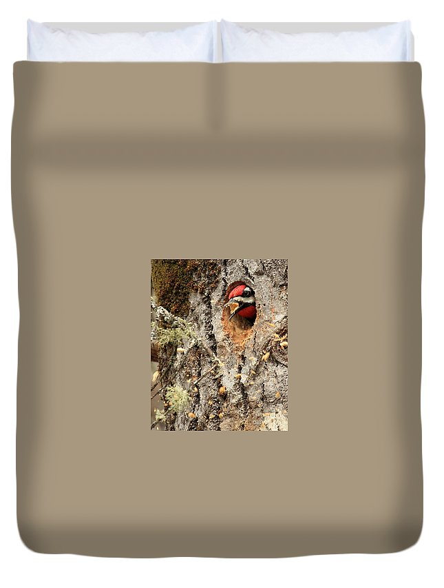 Woodpecker Duvet Cover featuring the photograph A Mouthful..excavation by Lloyd Alexander