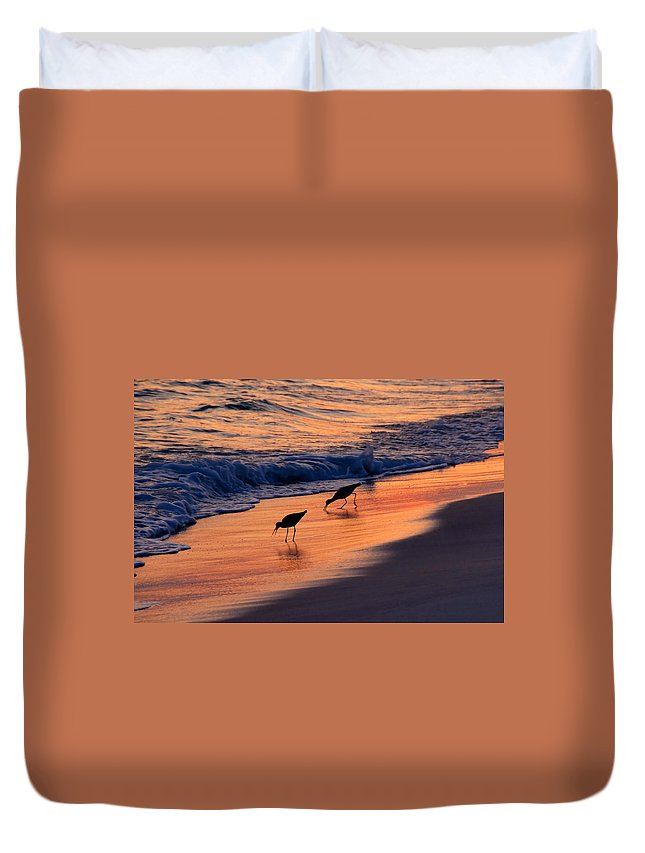 Fine Art Photography Duvet Cover featuring the photograph A Pair by David Lee Thompson