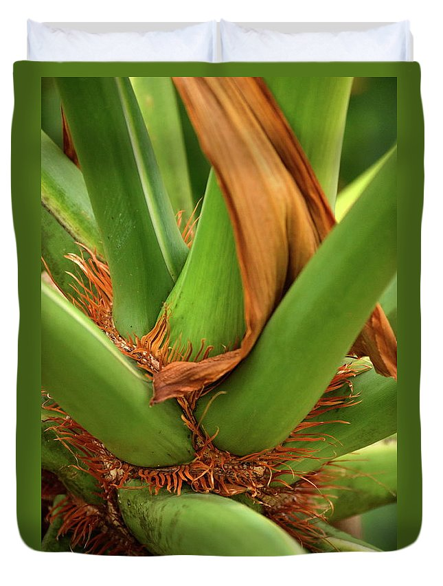 Palm Duvet Cover featuring the photograph A Palmetto's Elbows by JD Grimes