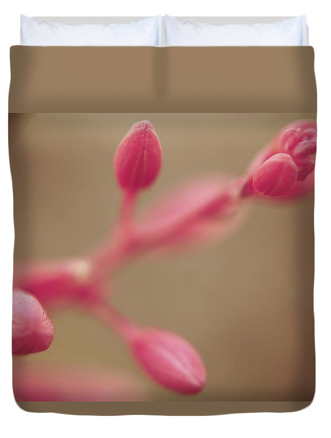 Flower Buds Duvet Cover featuring the photograph A Tentative Touch by Laurie Search