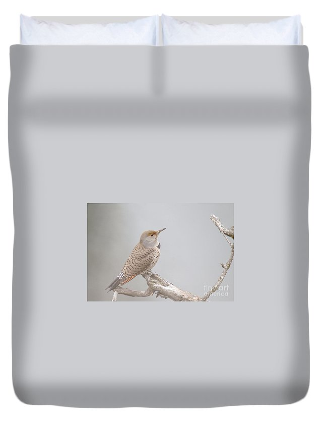 Birds Duvet Cover featuring the photograph A Thrush Posing by Jeff Swan