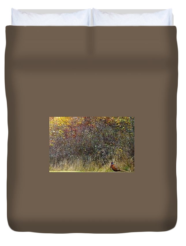 Watchful Duvet Cover featuring the photograph A Watchful Pheasant by Will Borden