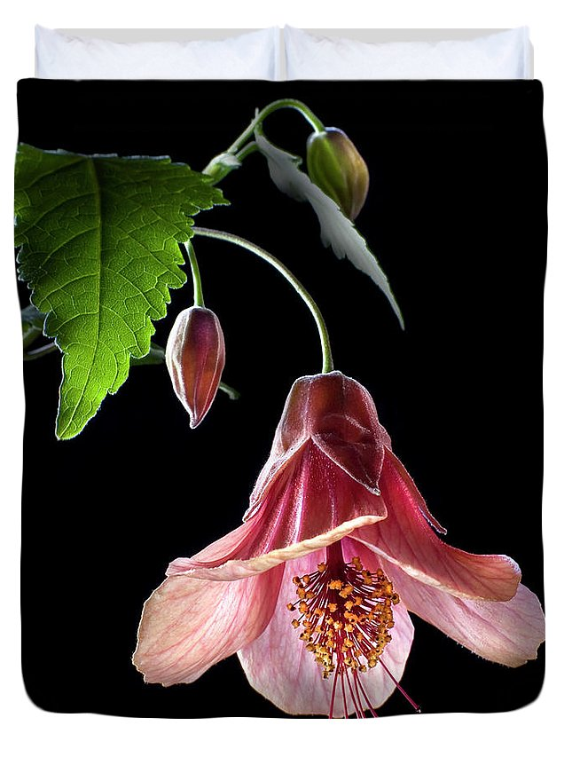 Flower Duvet Cover featuring the photograph Ablution by Endre Balogh