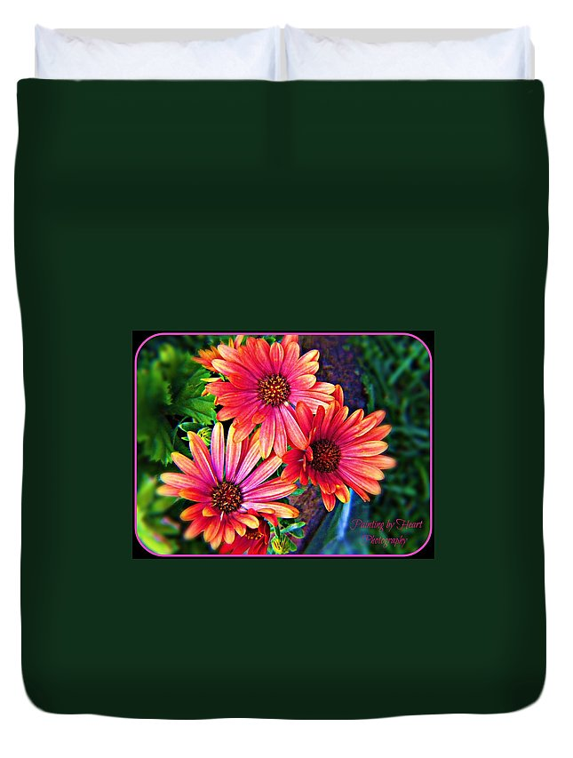 Flower Duvet Cover featuring the photograph African Daisy by Deahn   Benware