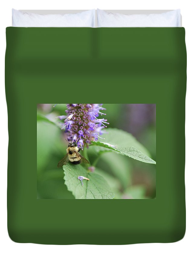 Nature Duvet Cover featuring the photograph Afternoon Snack by Susan Capuano