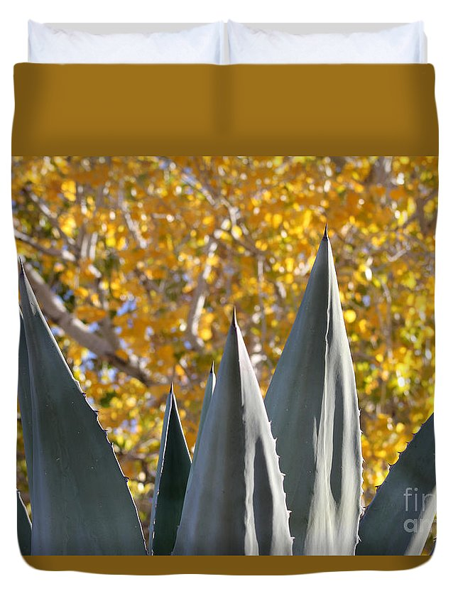 Agave Duvet Cover featuring the photograph Agave Spikes In Autumn by Alycia Christine