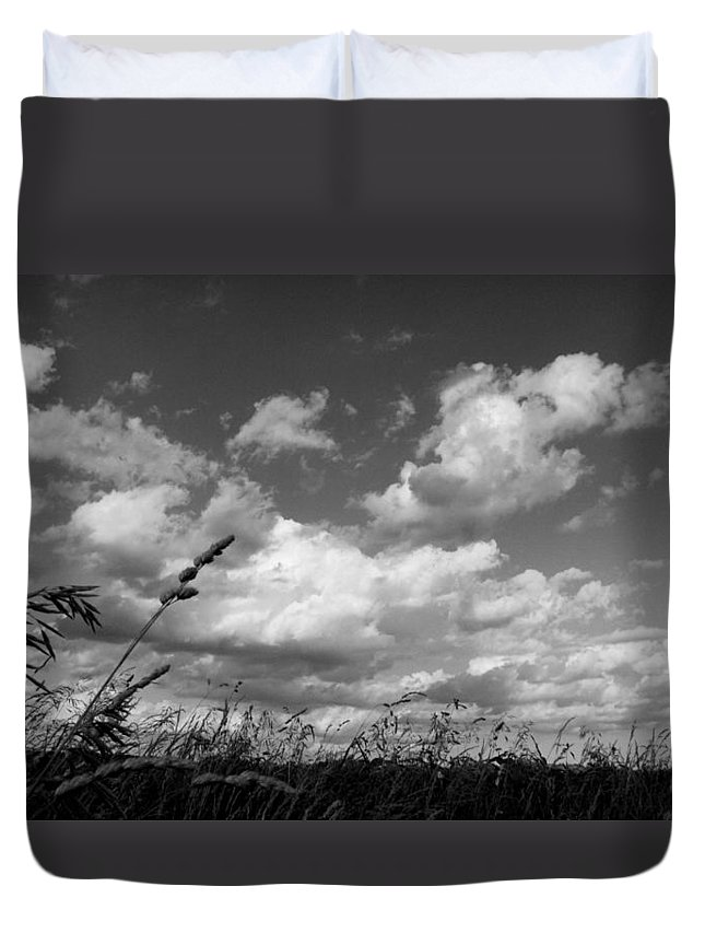 Alamo Duvet Cover featuring the photograph Alamo by Ed Smith