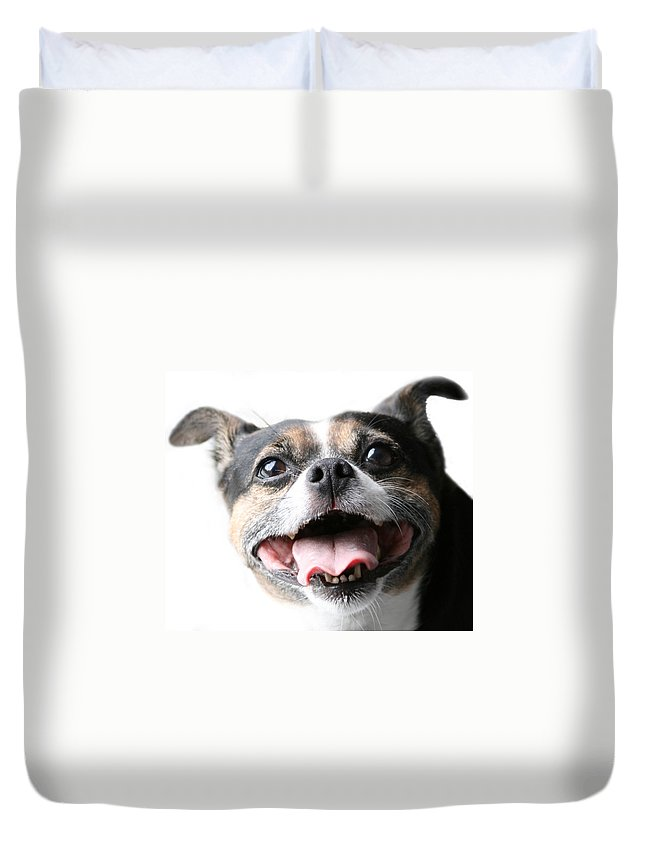 Jack Russell Duvet Cover featuring the photograph Almost A Jack Russell by Kathy Clark