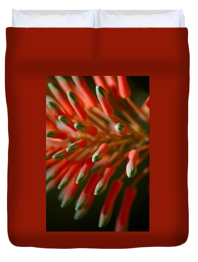 Aloe Duvet Cover featuring the photograph Aloe Bloom by David Weeks