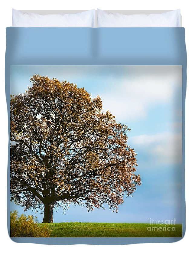Alone Duvet Cover featuring the photograph Alone On The Hill by Ari Salmela