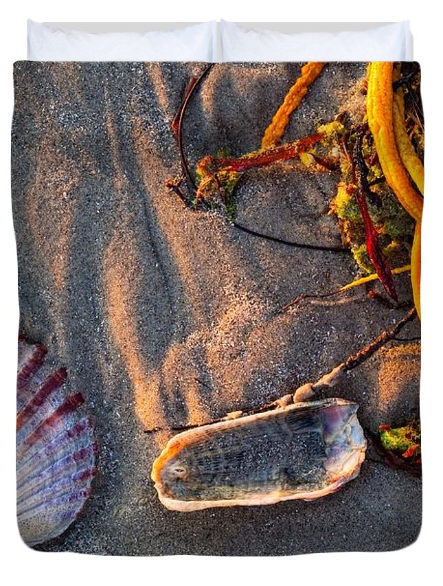 Beach Duvet Cover featuring the photograph Along The Beach Texas by Matt Suess