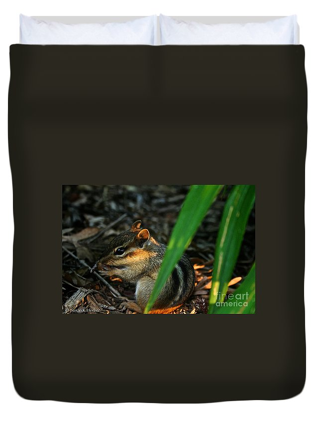 Outdoors Duvet Cover featuring the photograph Alvin by Susan Herber