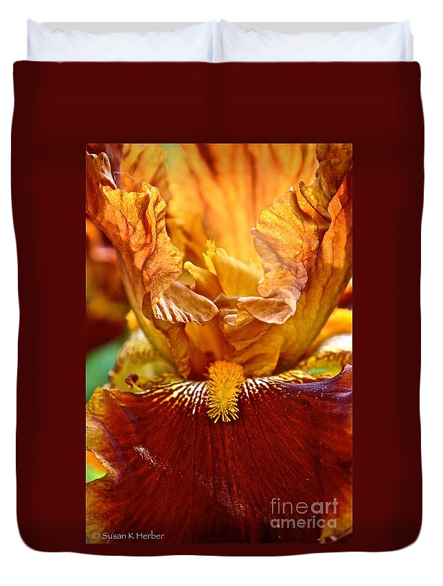 Plant Duvet Cover featuring the photograph Amber Stripes by Susan Herber