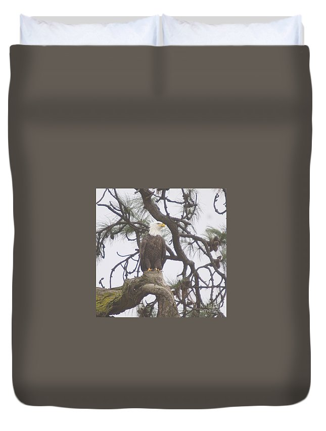 Eagle Duvet Cover featuring the photograph An Eagle Perched by Jeff Swan