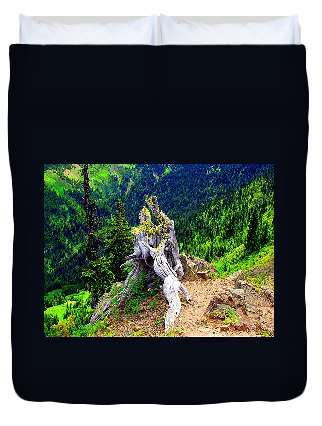 Forest Duvet Cover featuring the photograph Ancient And On The Edge by Marie Jamieson
