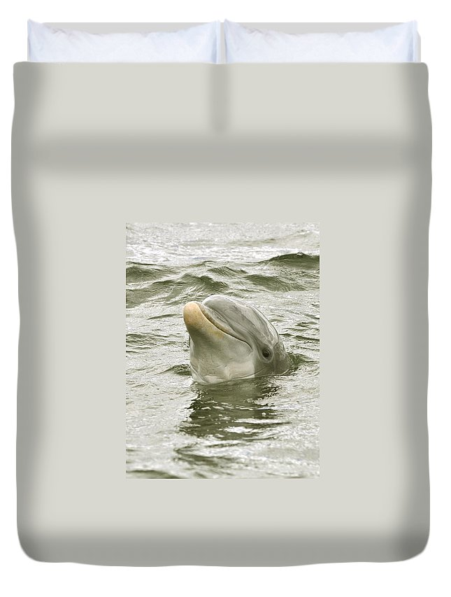 Dolphin Duvet Cover featuring the photograph Another Smiling Pose by Rick Frost