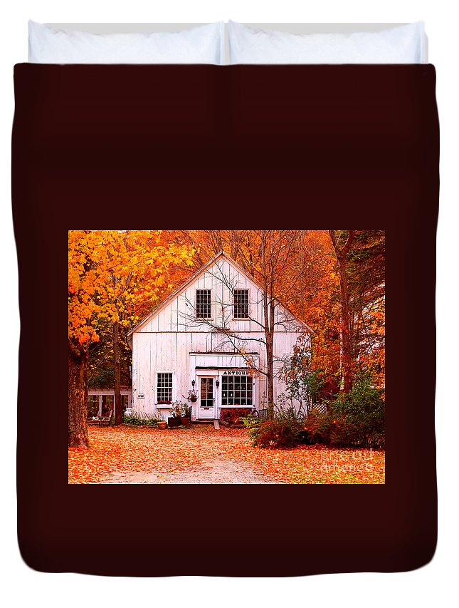 Antiques Store Duvet Cover featuring the photograph Antiques Store by Jack Schultz