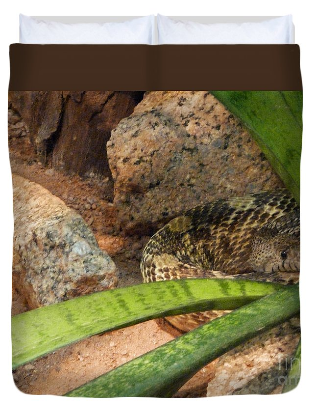Arizona Rattler Duvet Cover featuring the photograph Arizona Rattler by Methune Hively