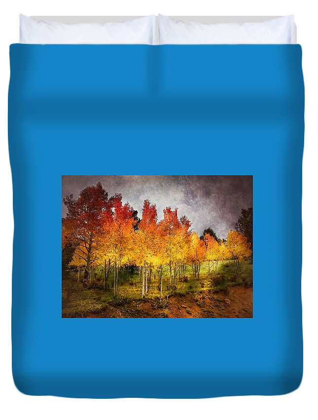 Autumn Duvet Cover featuring the photograph Aspen Grove In Autumn by Ellen Heaverlo