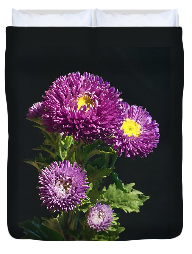 Aster Duvet Cover featuring the photograph Aster by Daniel Csoka