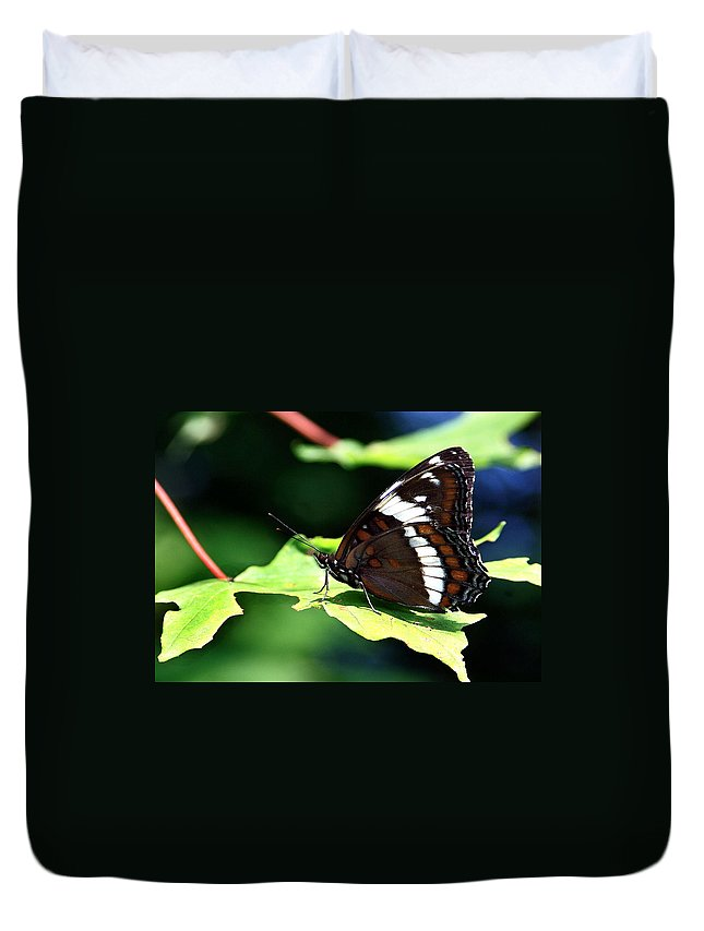 Butterfly Duvet Cover featuring the photograph At Rest by Burney Lieberman