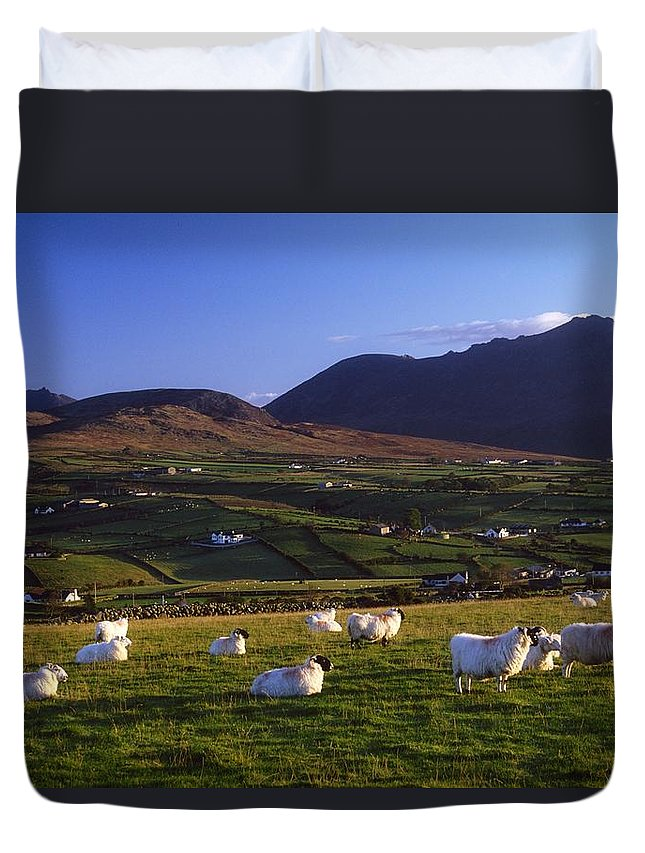 Agriculture Duvet Cover featuring the photograph Aughrim Hill, Mourne Mountains, County by Gareth McCormack