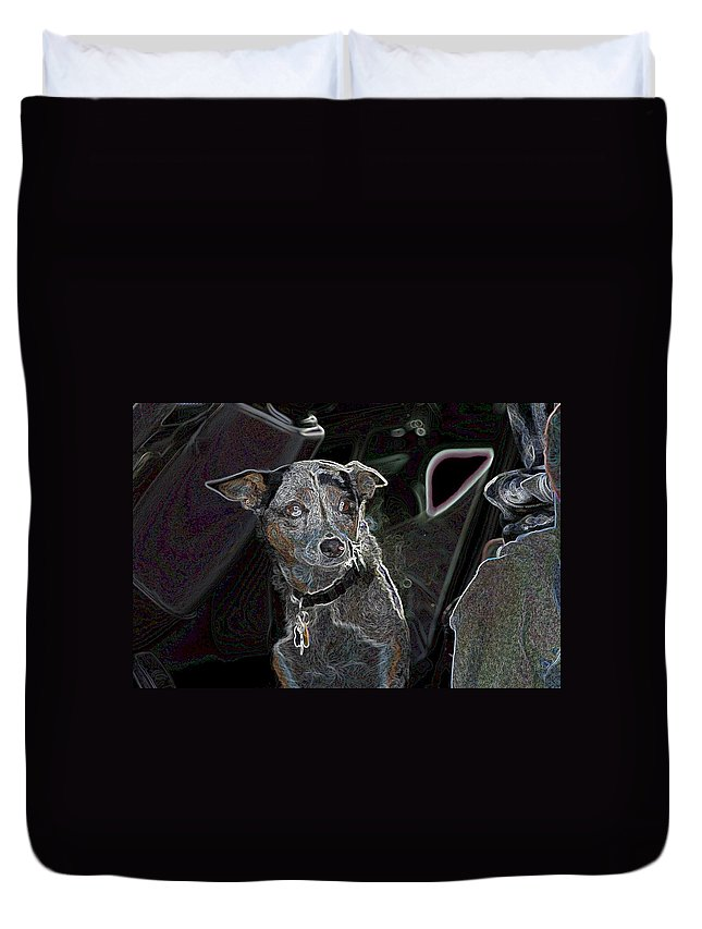 Australian Cattle Dog Duvet Cover featuring the photograph Australian Cattle Dog Sheltie Mix by One Rude Dawg Orcutt