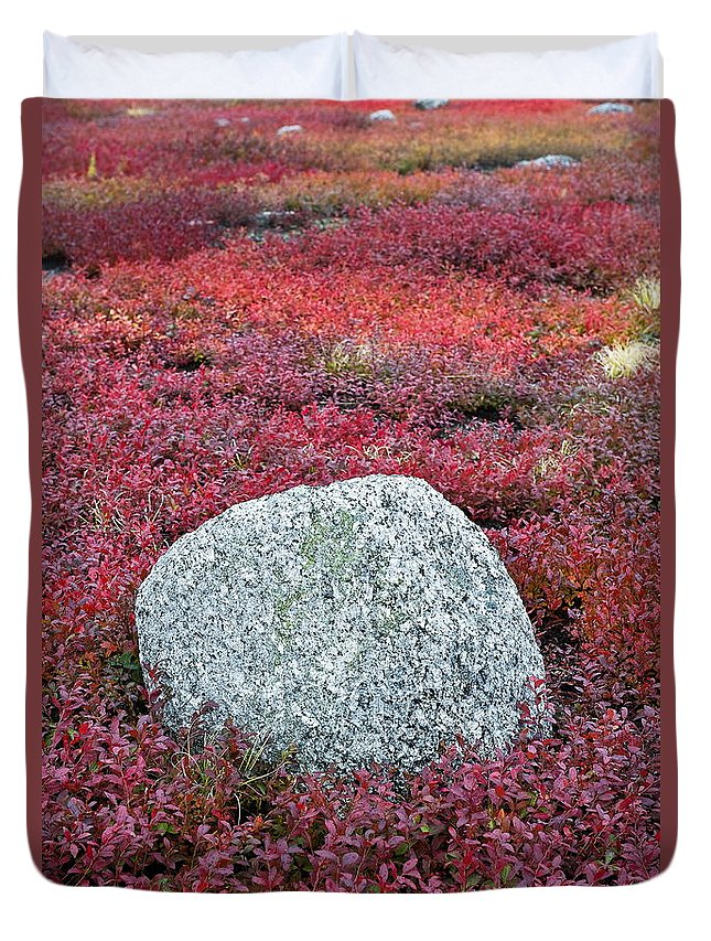 Maine Duvet Cover featuring the photograph Autumn Blueberry Field by John Greim