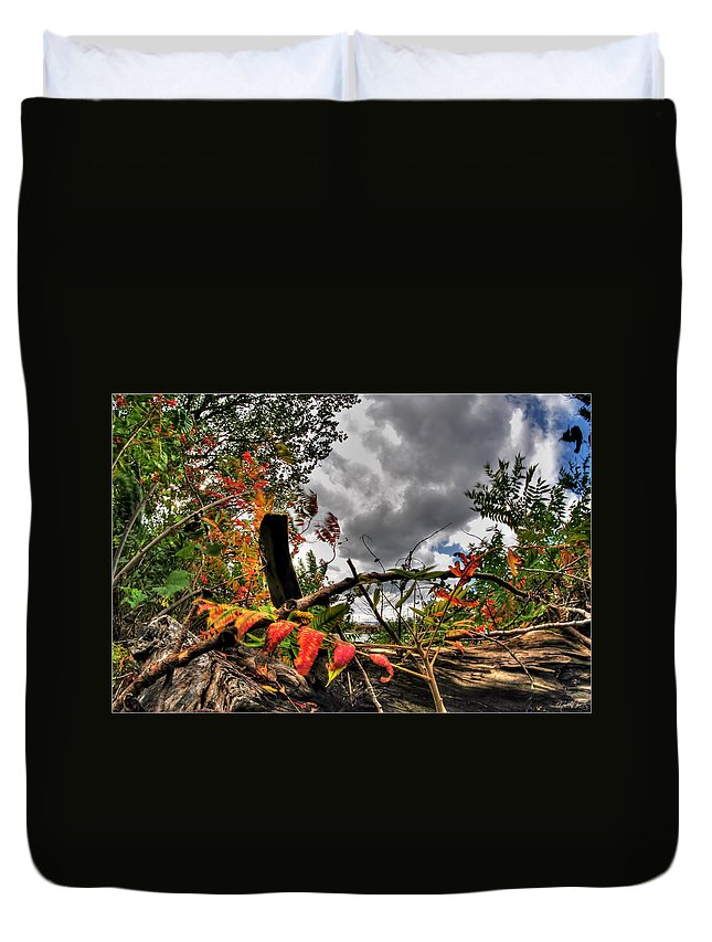 Duvet Cover featuring the photograph Autumn Breeze Through The Trees by Michael Frank Jr