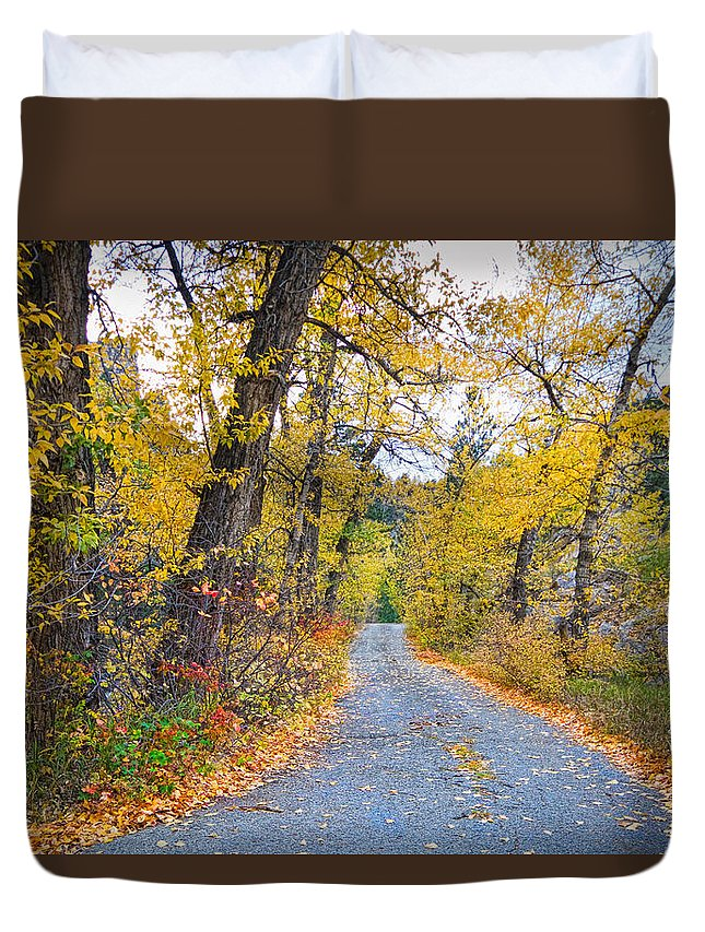Autumn Duvet Cover featuring the photograph Autumn Canyon Colorado Road by James BO Insogna